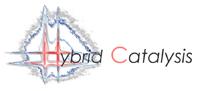 www.hybridcatalysis.com